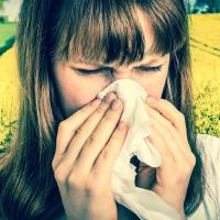 Leggyakoribb kérdések az allergológusnál