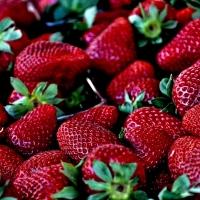 Allergiás, náthás vagy csak túl sok epret evett?