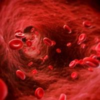 Felépülés a mélyvénás trombózisból