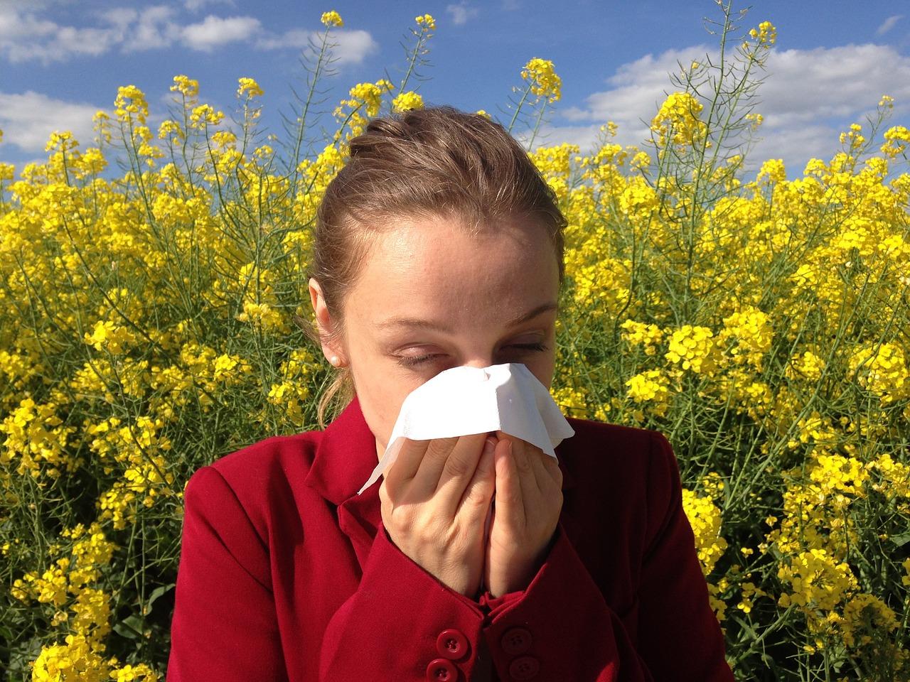 Durva napok várnak a pollenallergiásokra