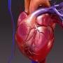 Mennyire veszélyezteti Önt a szívinfarktus?